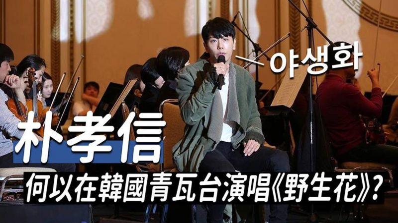 歌手朴孝信何以在韩国青瓦台演唱《野生花》?