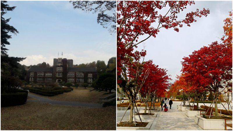 安妞哈謝唷~好好享受你的韓國留學生活!