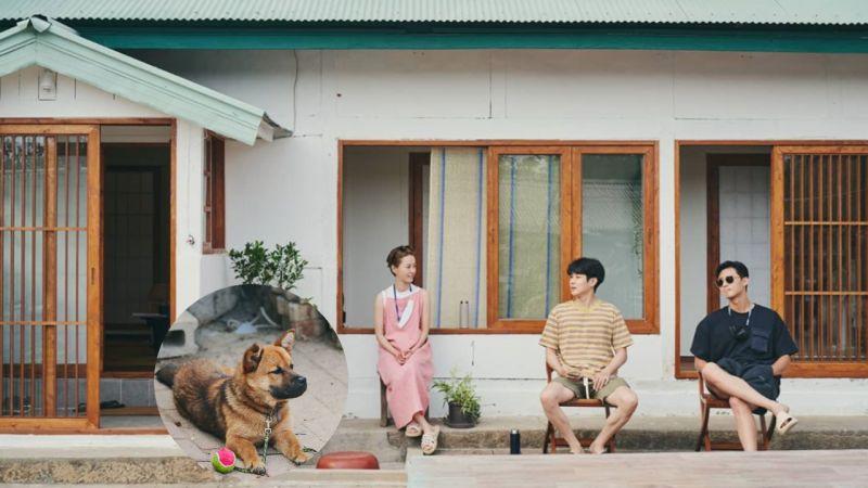 罗PD新综艺《暑假》首播D-3!公开郑有美、崔宇植、朴叙俊的合照,有青春海报的感觉啊!
