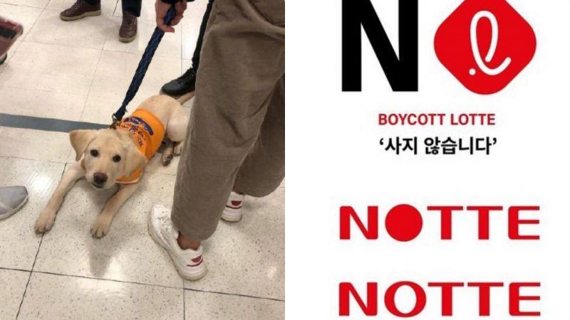 韩国乐天玛特拒绝导盲犬进入遭全网讨伐:国会都能进,凭什么超市不行