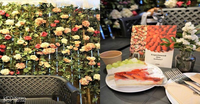 弘大咖啡厅推荐 : 有好吃水果塔的花草咖啡厅