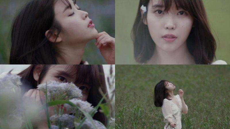 IU新專輯《花書簽二》預告片公開! 薰衣草花田、白裙,唯美又文藝~