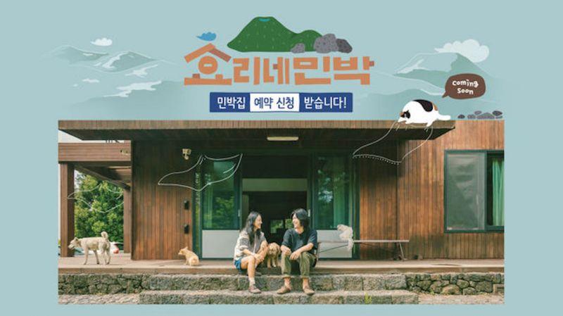 《孝利家民宿》第二季投宿旅客申请爆增   明年1月开放入住