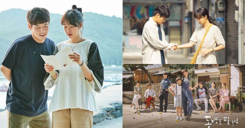 《山茶花开时》顺应好评延长集数?KBS2 澄清「不可能延长」
